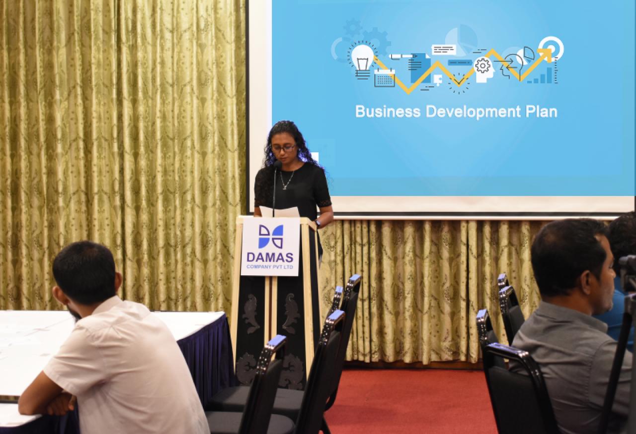Damas Business Development Plan 2019
